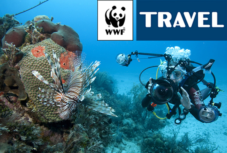 Fishermen's Cove WWF Travel