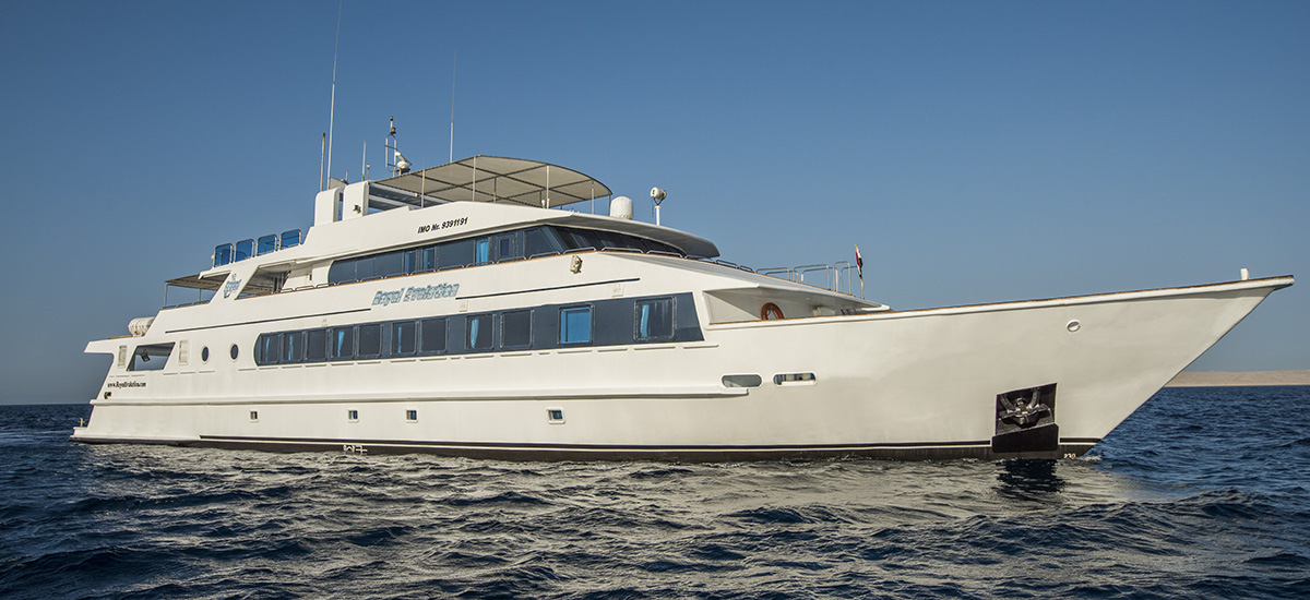 M/y Royal Evolution