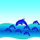 Natale di Pirulino, delfino curioso