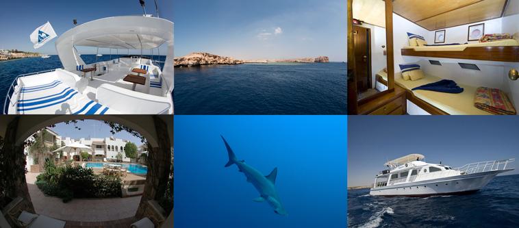 Mini-crociera Sharm + soggiorno al Camel Dive