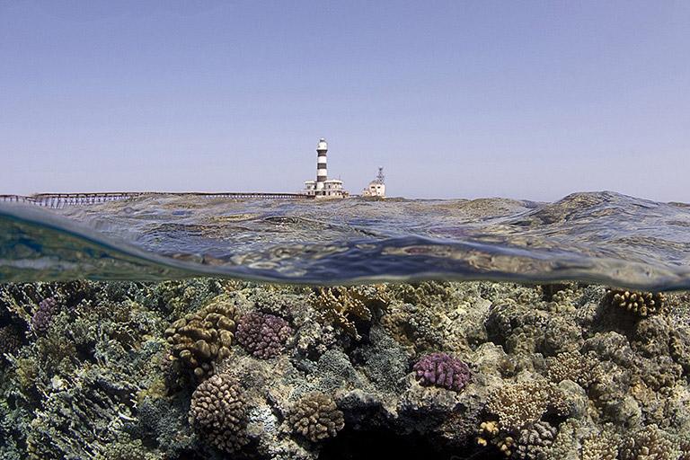 Scopri Mar Rosso - guarda le foto