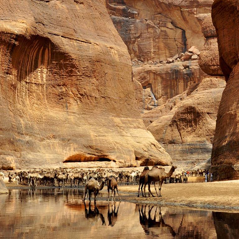 CIAD grande cuore del Sahara