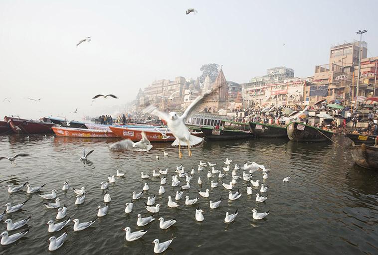 INDIA  Varanasi Calcutta